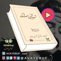 کتاب صوتی و PDF | شبنشینی باشکوه| مجموعه داستان کوتاه | نویسنده: غلامحسين ساعدی
